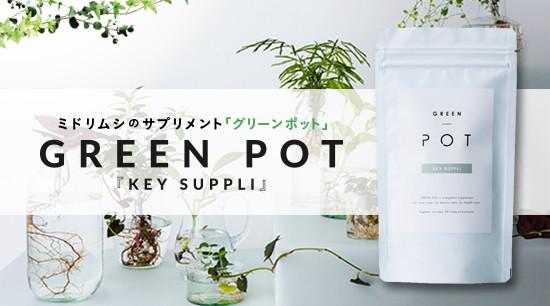 green_pot